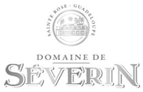 DomaineDeSeverin