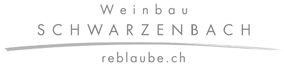 HermannSchwarzenbach
